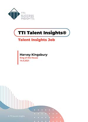 Musterreport Talent Insights Job